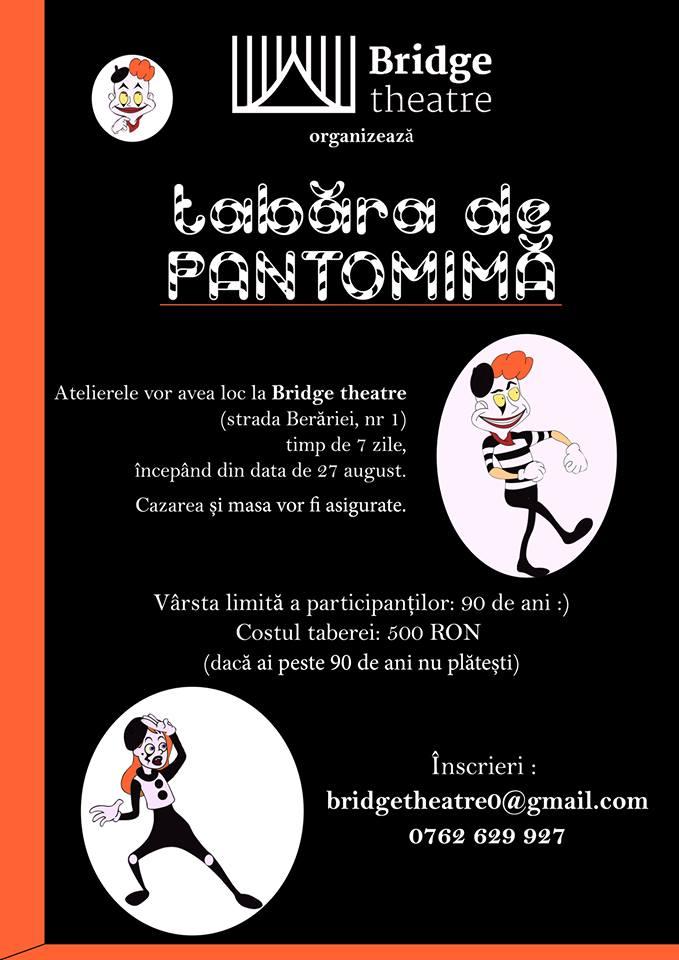 Tabara de pantomima