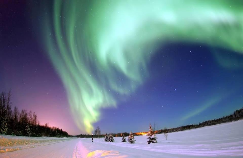 Copiii descoperă zona polară, la Creative Buzz