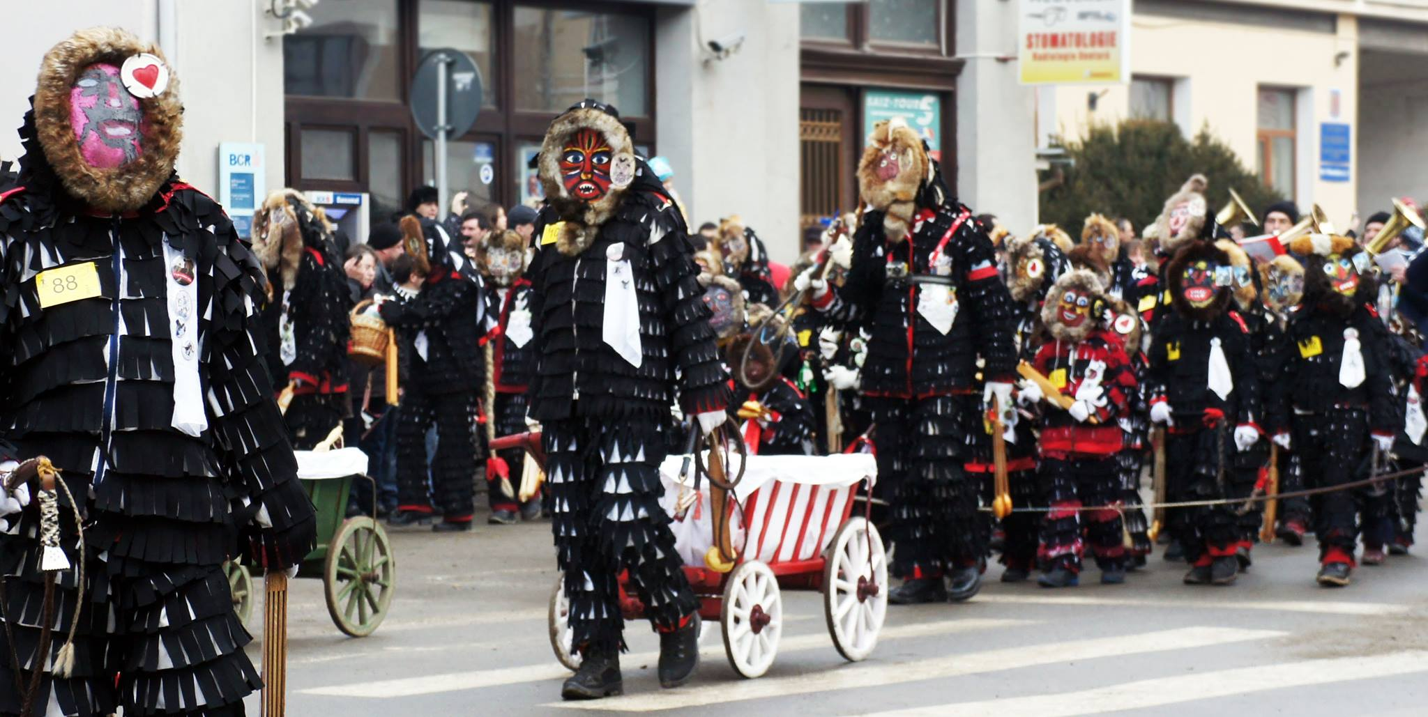 Urzelnlauf in Hermannstadt / Fuga Lolelor Sibiu