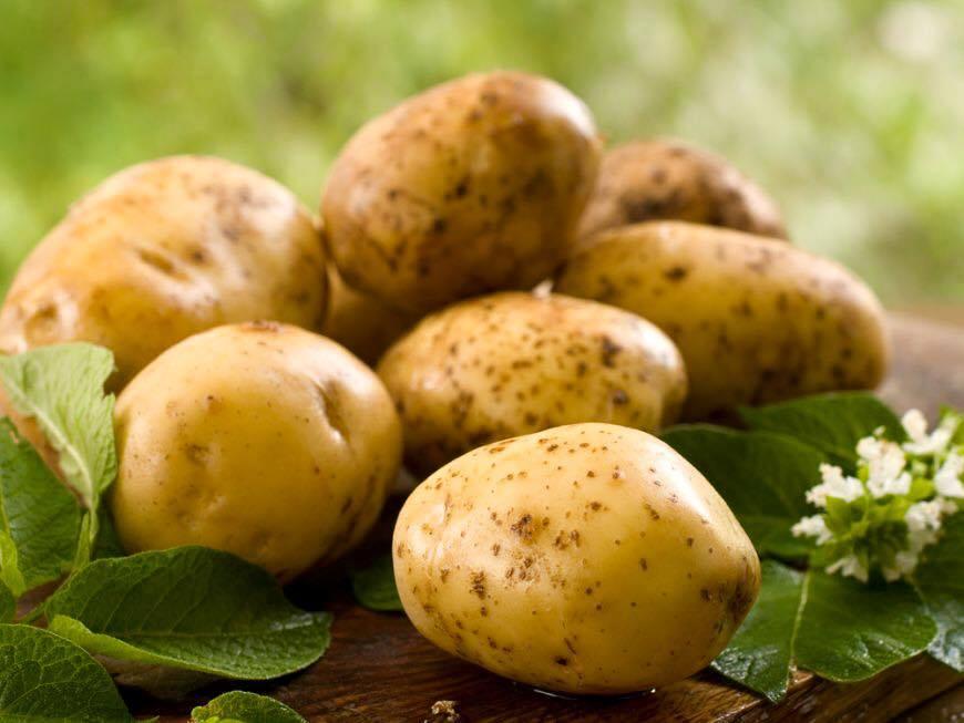 Sărbătoarea Cartofului la Palatul Brukenthal din Avrig