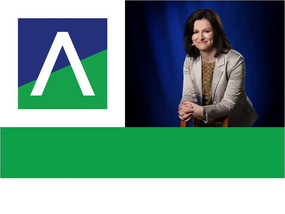 Atelierul de strategie susținut de Trusted Advisor Ioana Arsenie