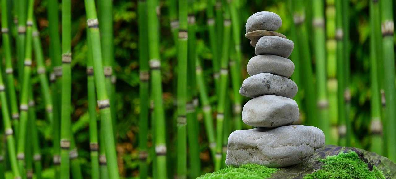 Armonia cu sinele: Mindfulness și iubirea de sine