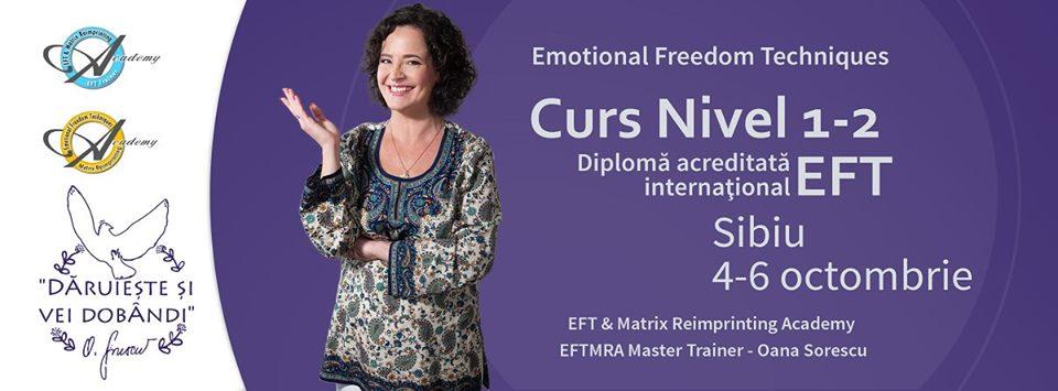 Curs EFT Nivel 1 si 2 cu Oana Sorescu la Sibiu