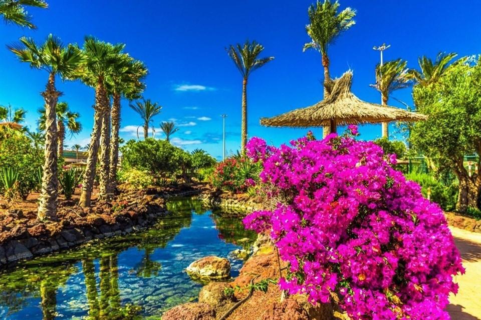 Insulele Canare - partea a 2-a