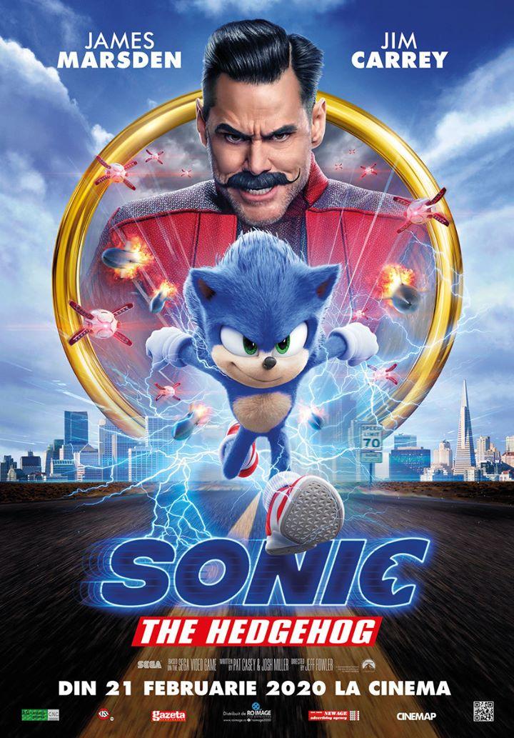 Sonic the Hedgehog (Sonic the Hedgehog) - 2D Subtitrat